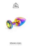 Plug bijou aluminium Rainbow S - Hidden Eden